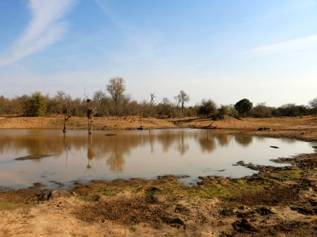 Klaserie Private Nature Reserve, Hoedspruit, Limpopo