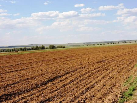 Farm, Senekal, Free State